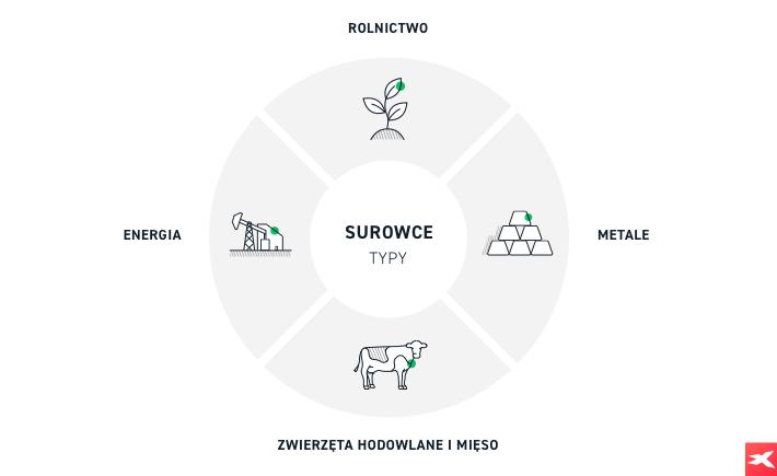 Kategorie podziału rynku surowców