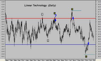 Daily Linear Chart